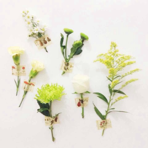 Play With Flowers