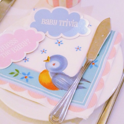 Evelyn's Baby Shower Party